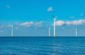 EDF gagne la bataille de Dunkerque dans l'éolien offshore