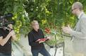 Cash investigation: main basse des multinationales sur les semences