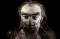 Imbroglio autour d'«Homo sapiens», le plus vieil Européen
