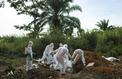 Comment le virus Ebola sclérose toujours l'Afrique centrale