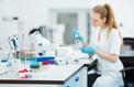 «Introduire des cellules humaines dans l'embryon d'un animal doit rester interdit»