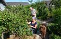 À la ferme du Bec-Hellouin, la vraie révolution verte