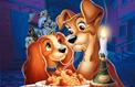 La Belle et le Clochard: le casting canin du remake de Disney dévoilé