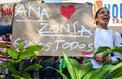 Incendies en Amazonie: sous pression, Bolsonaro songe à envoyer l'armée