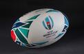 Mondial de rugby : TF1 diffusera 48 matchs