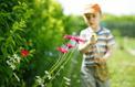 Pourquoi trouver un «trèfle à quatre feuilles» vous porte chance