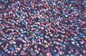 Plus de 300 millions de personnes sont atteintes d'une maladie rare dans le monde