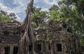 Angkor, les savants du temple sur France 5