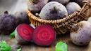 Rappel de lots de betteraves cuites des marques Lunor, Notre Jardin et Éco +