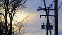 Le voisin doit élaguer les arbres proches des câbles de télécommunication