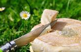 Femmes enceintes et enfants ne doivent pas manger de fromages au lait cru