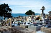 Vrai ou faux : questions de vie et de mort
