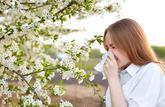 Soigner la rhinite allergique