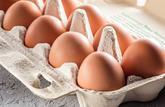 Derrière l'étiquette : les œufs