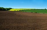 Les prix des terres agricoles vendues en 2018
