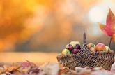 Le panier de saison du mois d'octobre 2019 : les fruits et légumes à consommer