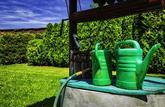 Trouvez d'autres sources d'eau pour une utilisation à l'extérieur