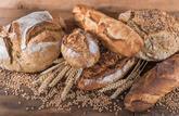 Fiche pratique : le pain