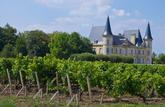 Le groupement foncier viticole, pour investir ou transmettre simplement