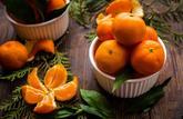 Le panier de saison du mois : les fruits et légumes à consommer en décembre 2019