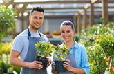 Travail en couple : quel statut pour le conjoint?