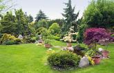 Vrai - faux : je peux tout faire dans mon jardin!