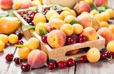 Le panier de saison du mois : les fruits et légumes à consommer en juin 2020