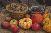 Le panier de saison du mois d'octobre 2020 : les fruits et légumes à consommer