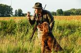 Gilet fluo et formation à la sécurité obligatoires pour chasser