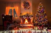 La vente de sapins sera autorisée dès le 20 novembre en vue de Noël