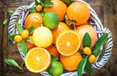 Le panier de saison du mois de décembre 2020 : les fruits et légumes à consommer