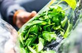 Auchan, Carrefour, Intermarché, Leclerc... Rappel de sachets de salades contaminées