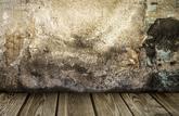 Les dégâts causés par la mérule ne sont pas couverts par l'assurance multirisques habitation