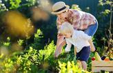 Cultiver un minipotager dans son jardin