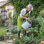 Arrosage du jardin: ce qu'il faut savoir