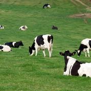 Antibiorésistance: pourquoi une mobilisation mondiale?