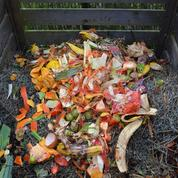 «Jardinez-vous!»: comment bien réussir son compost?