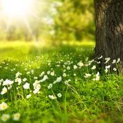 Jeu-concours – Remportez vos produits de soins bio Fleurance Nature !