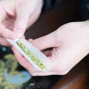 Trois étudiants canadiens créent un détecteur de cannabis