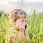 Pollens: risque d'allergie très élevé dans la moitié des départements