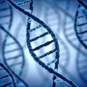 Tests génétiques : le business de l'ADN