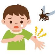 Comment soulager les piqûres de moustiques?