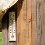 Comment bien faire repartir son jardin au retour des vacances