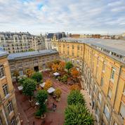 Classement des masters management : les écoles de commerce françaises au top
