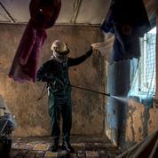 Afrique: la lutte contre le paludisme s'essouffle, selon l'OMS