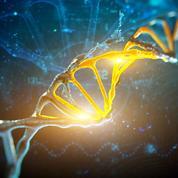 Quel avenir pour les tests génétiques en France?