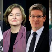 Société civile, écolos, juppéistes... la liste LREM aux européennes passée au crible