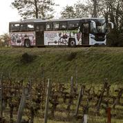 Le carburant au marc de raisin arrive en Charente-Maritime