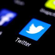 Lutte contre les «fake news»: Twitter bloque une campagne du gouvernement français