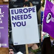 Élections européennes: cinq listes qui sortent de l'ordinaire